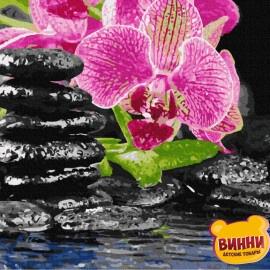 Орхідея на камінні, 40*50 см, GX4482