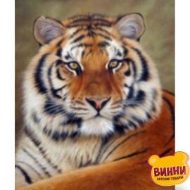 Купити алмазну мозаїку Тигр 30*40 см, на підрамнику, в коробці, H8368