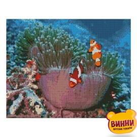 Купити алмазну мозаїку STRATEG Океанічні рибки, 40*50 см, FA10543