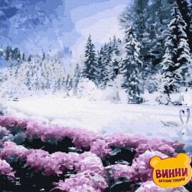 Купити картину за номерами RainbowArt Зимове озеро, 40*50 см, GX36519