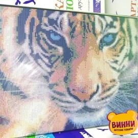 Купити алмазну мозаїку Тигр 30*40 см, на підрамнику, в коробці