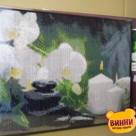 Купить алмазную мозаику Белые орхидеи 30*40 см, на подрамнике, в коробке, H8348
