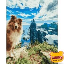 Купити картину за номерами Нікітошка Шелті на скелі 40*50 см, GX39159