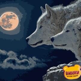 Купити картину за номерами Artissimo Вовки 40*50 см, 50*60 см PN4040