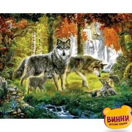 Купить картину по номерам Mariposa Семья волков в лесу, 40*50 см Q2254