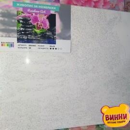 Купити картину за номерами RainbowArt Орхідея на камінні, 40*50 см, GX4482