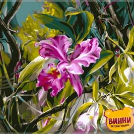Купить картину по номерам Babylon Орхидея, 40*50 см VP101