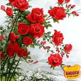 Купить картину по номерам Babylon Розы, 40*50 см VP610