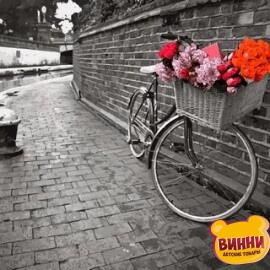 Купить картину по номерам Babylon Велосипед любви, Фотохуд. Ассаф Франк, 40*50 см VP695