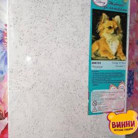 Купить картину по номерам ArtStory AS0791 Чихуахуа, собачка