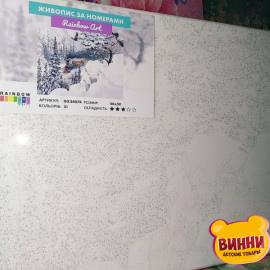 Купити картину за номерами RainbowArt Зимовий паровоз, 40*50 см, GX34074