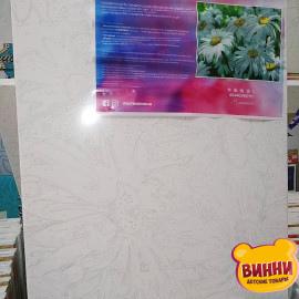Купити картину за номерами Artissimo Ромашки 40*50 см, 50*60 см, PN7151