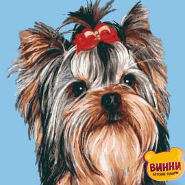 Купить картину по номерам Riviera Blanca, Красавица, собачка йоркширский терьер, 40*50 см, RB-0267