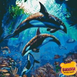 Купити картину за номерами Riviera Підводне царство, касатки, 40*50 см, RB-0420