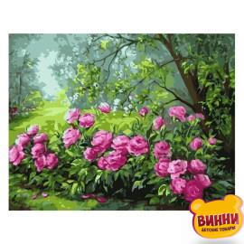 Купити картину за номерами STRATEG Барвисті кущи піонів, 40*50 см, VA-0343