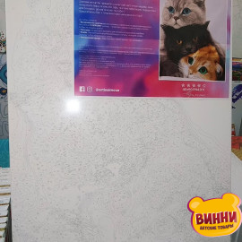Купити картину за номерами Artissimo Три коти, 40*50 см, 50*60 см, PN4201