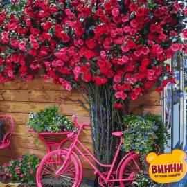 Розовый велосипед, 40*50 см Q2270