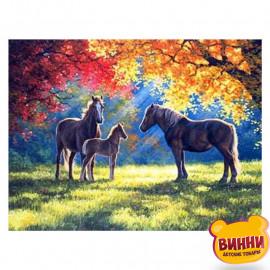 Конячки у лісі, 30*40 см, GB74356