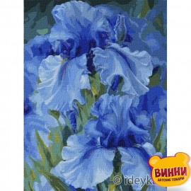 Купити картину за номерами Ідейка, Блакитні іриси, 30*40 см KHO2988
