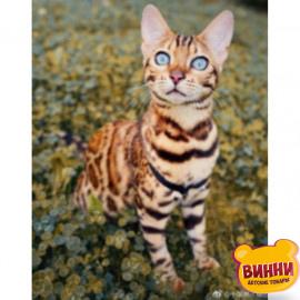 Бенгальська кішка, 30*40 см, на підрамнику, в коробці, H8682