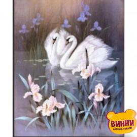 Купити алмазну мозаїку Лебеді, 30*40 см, на підрамнику, в коробці, H8684