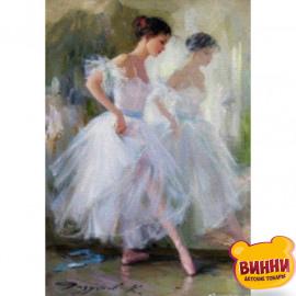 Купити алмазну мозаїку Балерина, 30*40 см, на підрамнику, в коробці, H8701