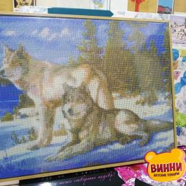 Купити алмазну мозаїку Babylon Вовки, 40*50 см, ST236
